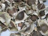 Miscellaneous Items Moringa Oleifera Seed,