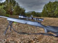 Home Entertainment Weatherby Vanguard Series 2 TRR RC