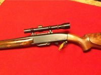 Guns & Hunting Supplies Remington 742 243