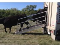 Livestock & Accessories Portable Cattle Liner Loading Chute
