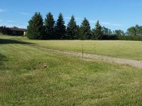 Gorgeous Country Acreage for sale Hoey SK