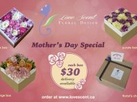 Furnishings and Decorations Mother's Day Fresh Flower Box