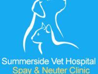 Pets / Pet Accessories Veterinary Clinics Edmonton