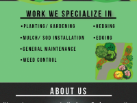 Home & Garden Services Blooms Gardening and Landscaping -- AFFORDABLE PRICING --