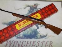 Guns & Hunting Supplies Winchester Model 100