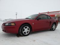 Cars 2000-10 2004 Ford Mustang 40th Anniversary