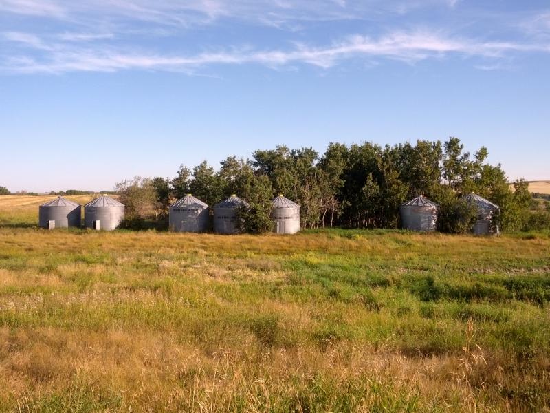 Sherwood Chev Saskatoon >> 7 WEST STEEL GRAIN BINS FOR SALE!!!!!!!!! in Richard SK   Grain Bins   CanSellAll Classifieds