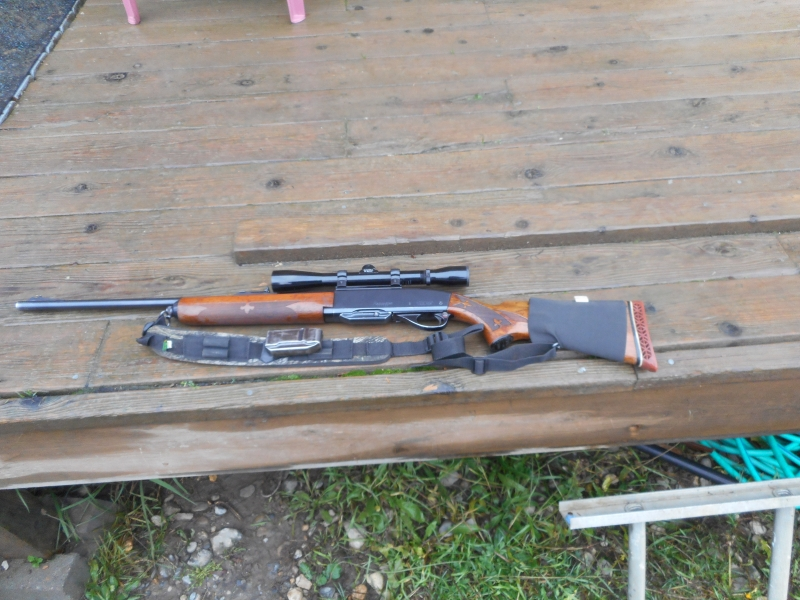 steel receiver remington 742 semi auto in Eagle Bay BC