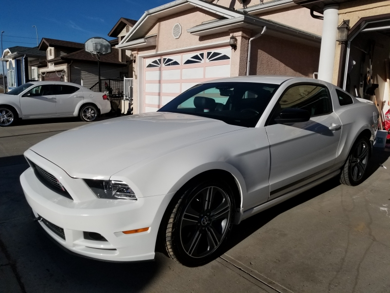 Mustang Club Of America >> 2013 Ford Mustang Club Of America 76000km In Calgary Ab