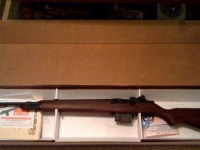 Springfield M1A Loaded