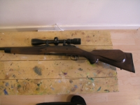 My Savage Arms Rifle in 30-06