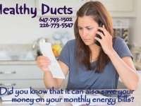 Healthy air ducts clean