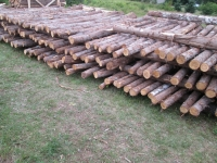 10000-pieces-cedar-fence-posts-8ft